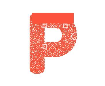expertise-picto-p